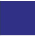 Strategic and Social Focus Logo